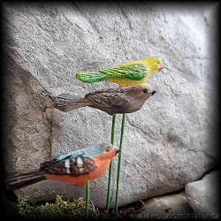 Ptáci, 12ks