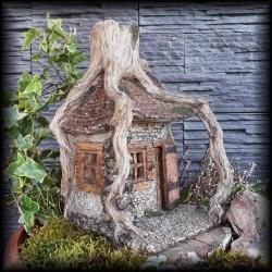 Domeček v kořenu